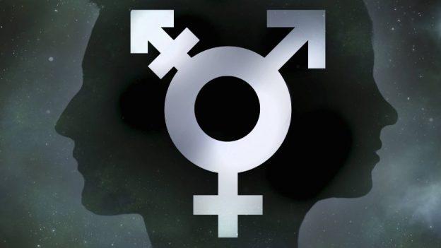 Silhouette von Frau und Mann R¸cken an R¸cken mit Transgender-Symbol PUBLICATIONxINxGERxSUIxAUTxONLY Copyright: xGaryxWatersx 11591364